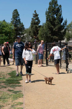 2018 0704 RPV EastView Doggie Parade Photos-02514.jpg
