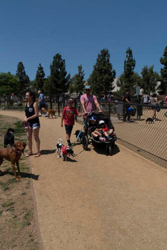 2018 0704 RPV EastView Doggie Parade Photos-02534.jpg