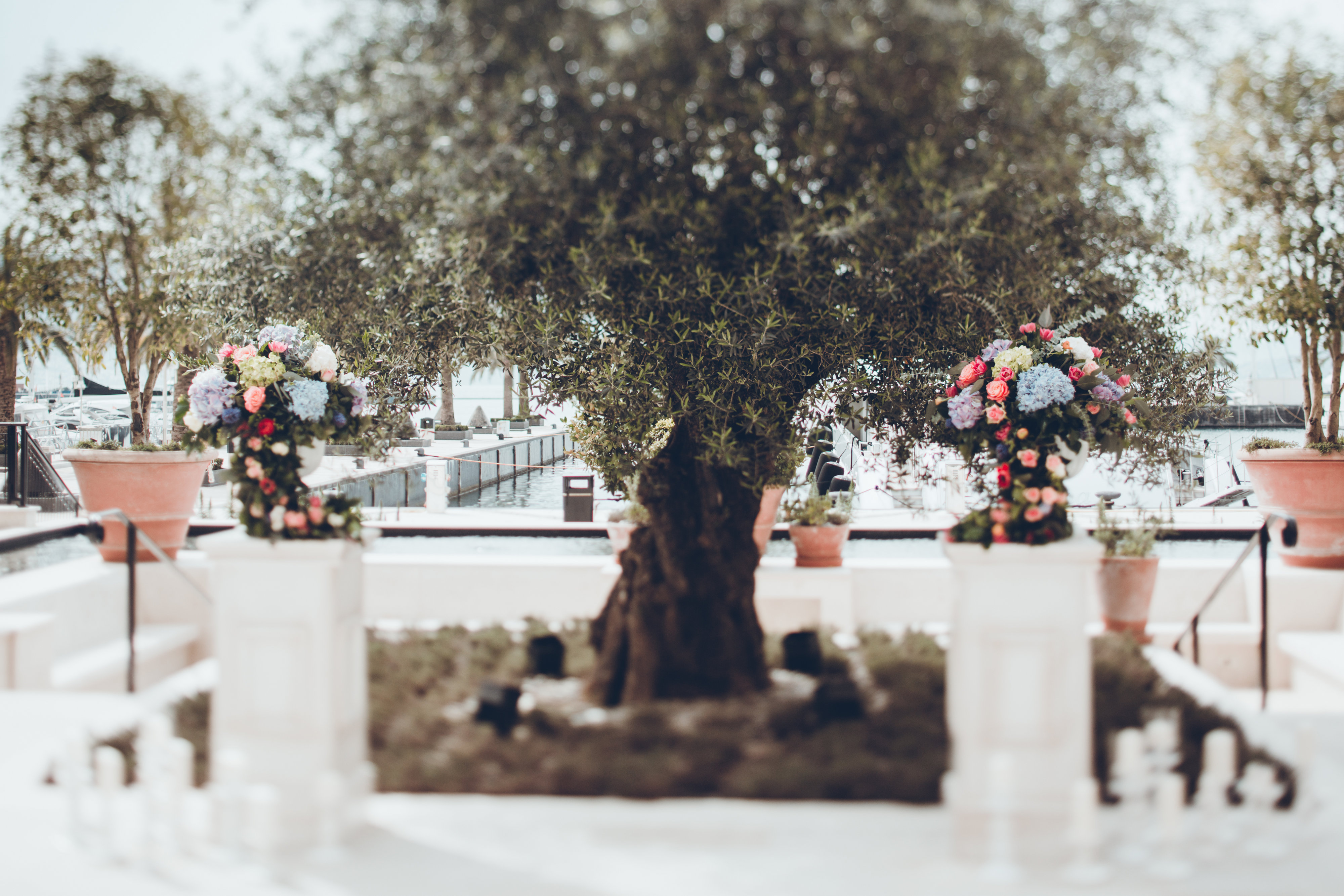 wedding Porto Montenegro