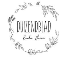 Duizendblad.JPG