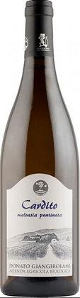 Witte wijn - Cardito - Malvasia Puntinata - Lazio IGP