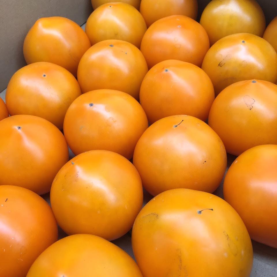 キャルファーム神戸の美味しいトマト