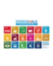 SDGs spuare.jpg