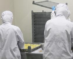 南信州菓子工房 工場