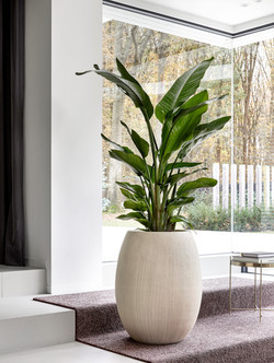 Sophisticated Planter Natural Collection