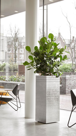 Ribbed Planter Natural Collection