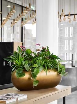 Desk Bowls Natural Collection