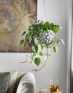 Hanging Displays Natural Collection
