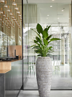 Tall Planter Natural Collection