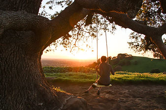 Girl-on-Swing-Under-Tree-Watching-Sunris