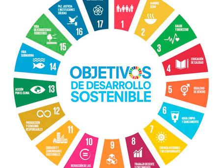 La cuestión institucional en los ODS