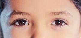 La Administración desde los ojos de unos niños (II)