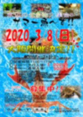 サマー魚~ず!!.jpg