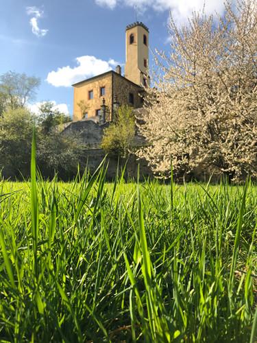 Burgblick aus dem Terrassengarten