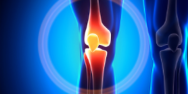 Virtual Lunch & Learn: Connective Tissues- Joint and Bone Health