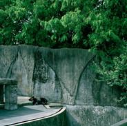 2007.10.18 豊橋総合動植物園 009 16_20.jpgの複製