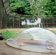 2012.9.14 高知県立のいち動物公園 013 16_20.jpgの複製