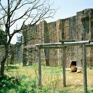 2011.4.18 西海国立公園九十九島動植物園 015_6.jpgの複製