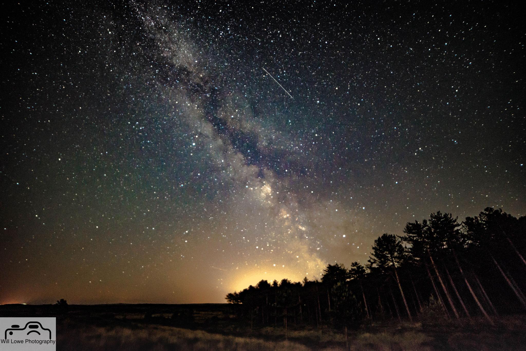 Milky Way over Studland Treeline
