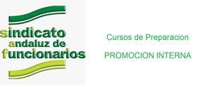 promocion interna.jpg