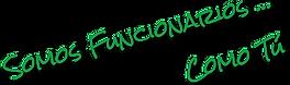 Logo SAF