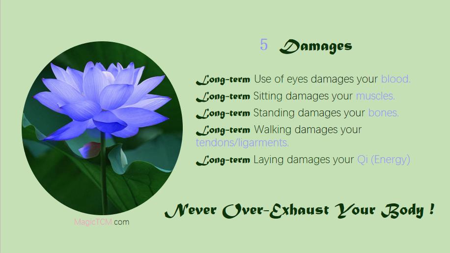 五劳-five damages.png