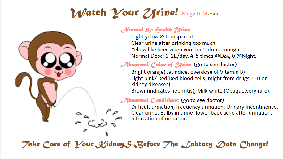 watch your urine.png