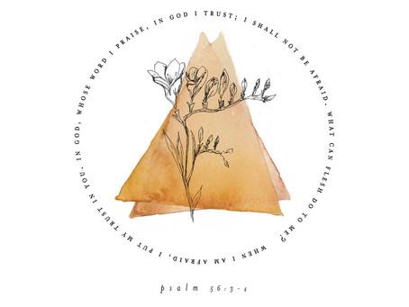 Fighter Verse - Psalm 56:3,4
