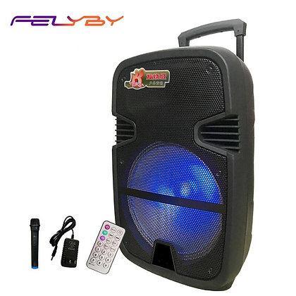 FELYBY 12-Inch Wireless Bluetooth High-Power Surround Sound Speaker Outdoor
