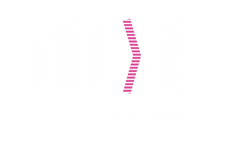 amixie-02.png