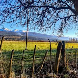 Nogales-01.jpg
