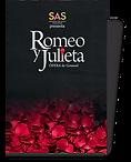 Programa Romeo.png
