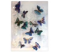 mariposas2.jpg