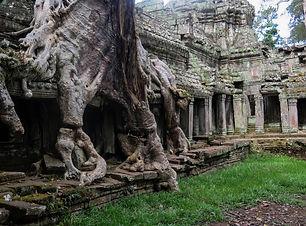 cambodia-603401.jpg