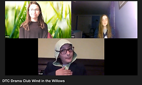 Wind in the Willows.png
