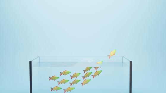 2021-05-24-Fish-02.jpg