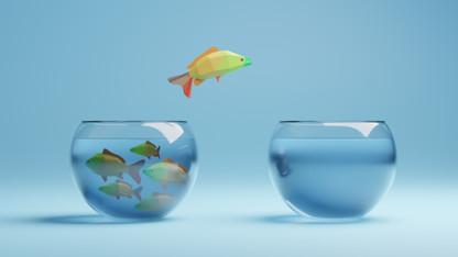 2021-05-24-Fish-01.jpg