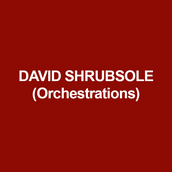 DAVID SHRUBSOLE (Orchestrations) has written music and lyrics for The Great Wall, The Friendship of Town Mouse & Country Mouse and Pinocchio (Drama Centre, Singapore), and So, This Then Is Life (59E59, New York– Drama Desk winner 2017). Orchestrator/arranger credits include: Porgy & Bess, Hello Dolly (Regent's Park Open Air Theatre), Sweeney Todd, Annie (West Yorkshire Playhouse), I Love You, You're Perfect Now Change (Singapore Drama Centre), Peter Pan (Birmingham Repertory Theatre), The Three Musketeers (Chicago Shakespeare Theatre), Assassins, Ain't Misbehavin', A Chorus Line and High Society (Crucible, Sheffield), Annie Get Your Gun (National Tour). Musical director for London Road (National Theatre and feature film).