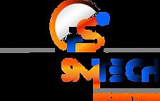 FaraSimTech Logo