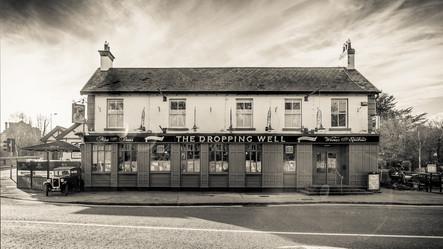 The Dropping Well- Milltown, Dublin