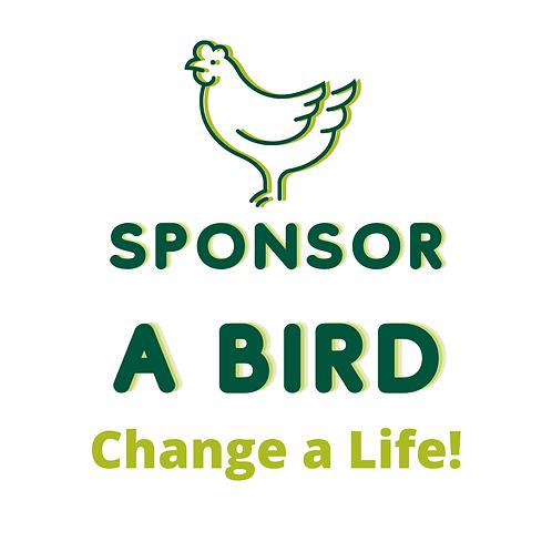 Sponsor a Bird!
