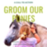Groom Our Ponies.png