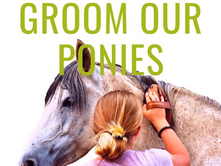 Groom Our Ponies!