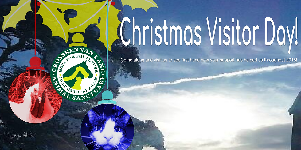 Christmas Visitor Day 2018