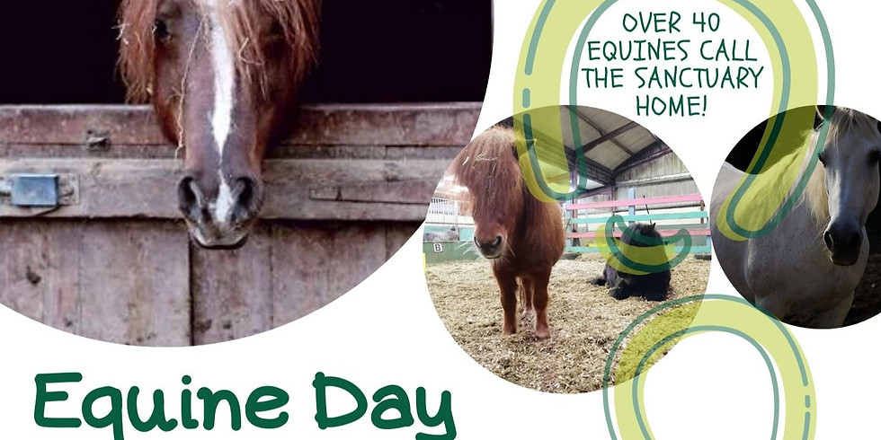 Equine Day
