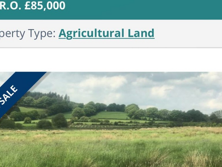 Help us Buy Land!