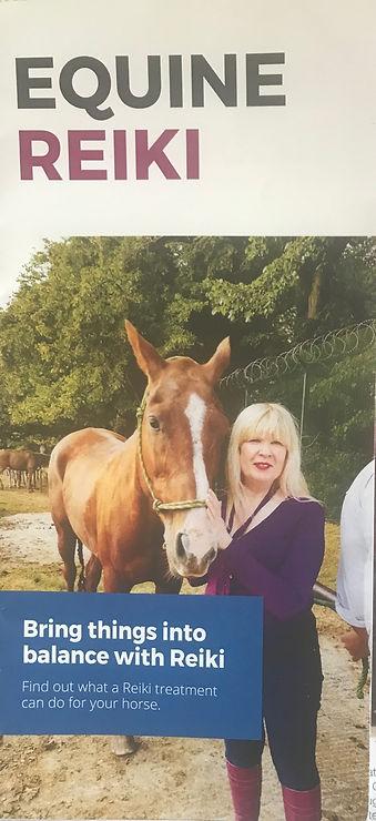 Millionaire Equine Services
