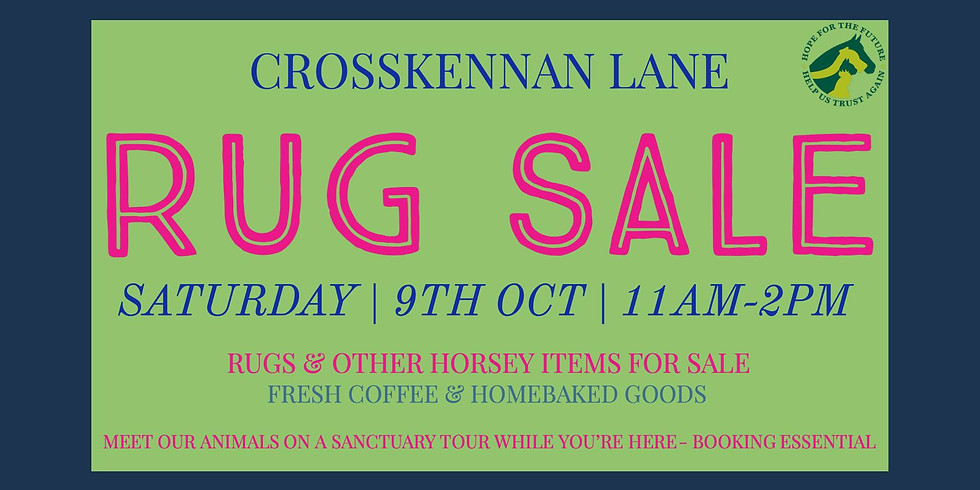 Tack and Rug Sale