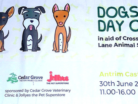 Dog's Day Out 2018