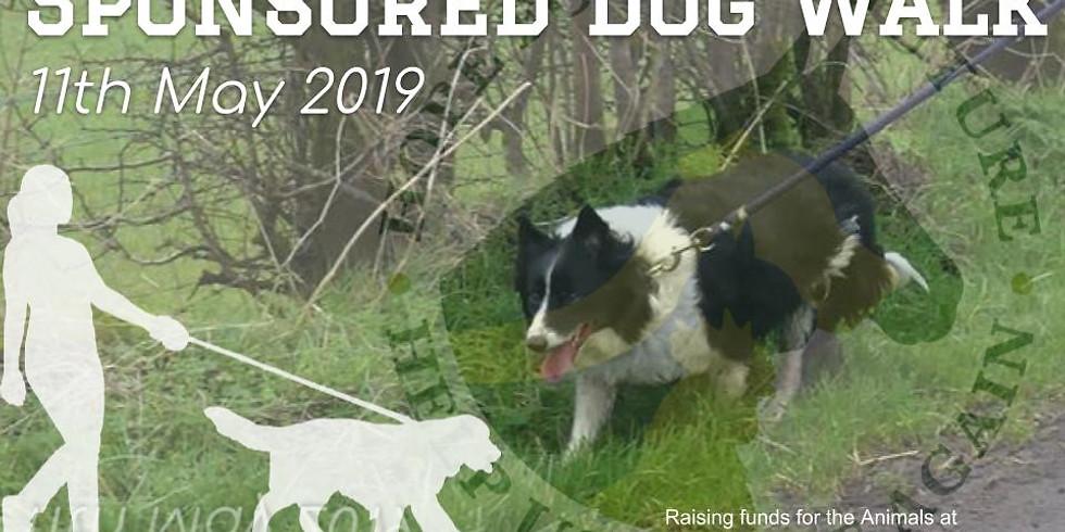 Sponsored Dog Walk 2019